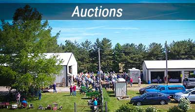 Local Auction Listings in Central Missouri